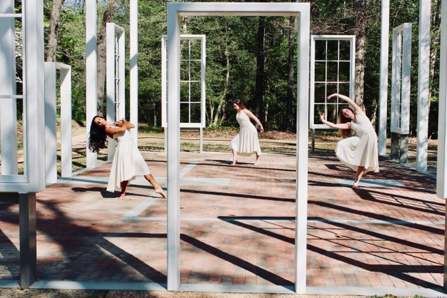 Shannon Comerford – RVA Dance Collective – Small Plates